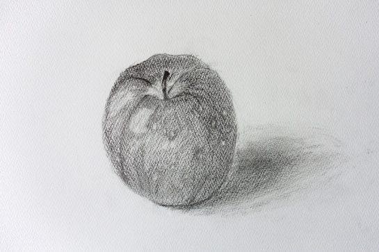 鉛筆デッサン・りんご(小4)