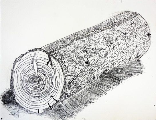 丸太のペン画(小2)