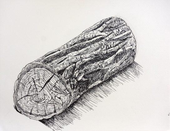 丸太のペン画(小5)