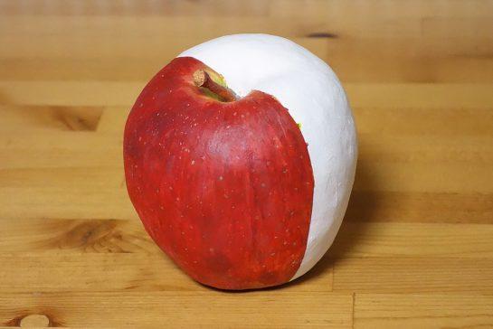 りんごの模刻見本