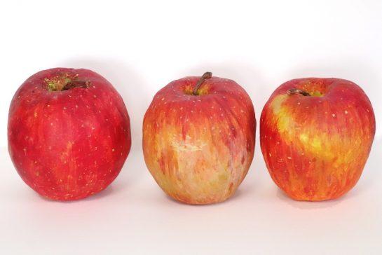完成「リンゴの模刻」(日曜午前クラス)