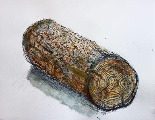 丸太のペン画水彩(小4)