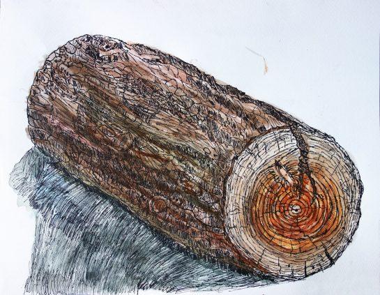 丸太のペン画水彩(小3)