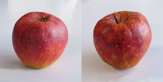 リンゴの模刻完成2021(小4・5)