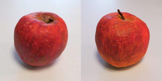 リンゴの模刻完成2021(小5・4)