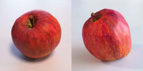 リンゴの模刻完成2021(小6・5)